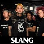 Slang_SDF2014