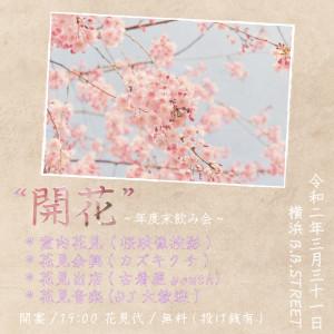 花見DAY